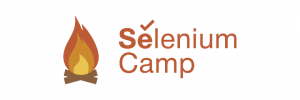 sc16-logo-color1200x400-300x100 Selenium Camp